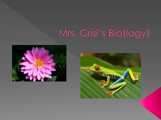 Mrs.  Crisi�s  Bio(logy)