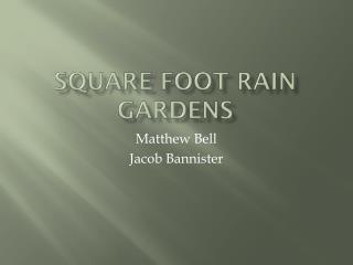 Square Foot Rain Gardens