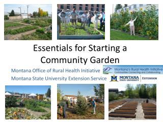 Essentials for Starting a Community Garden