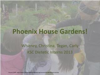Phoenix House Gardens!