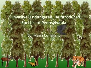 Invasive ,Endangered, Reintroduced 		Species of Pennsylvania