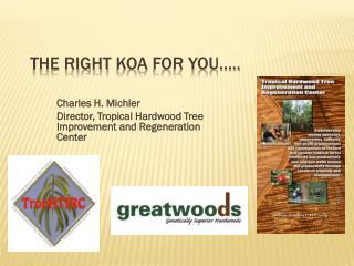 The right  koa  for you…..