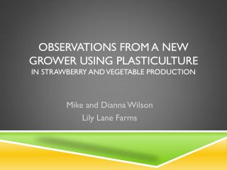 Observations from a New Grower Using  Plasticulture in Strawberry and Vegetable Production