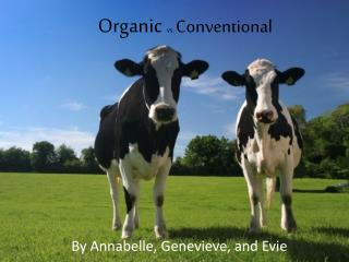 Organic vs.  Conventional