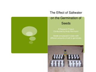The Effect of Saltwater on the Germination of Seeds