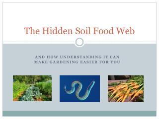 The Hidden Soil Food Web
