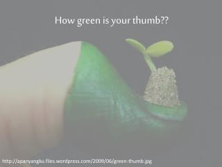 How green is your thumb ??