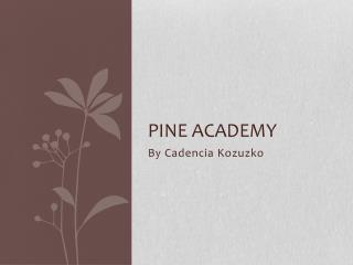 Pine Academy