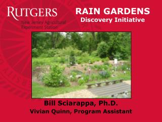 RAIN GARDENS Discovery Initiative