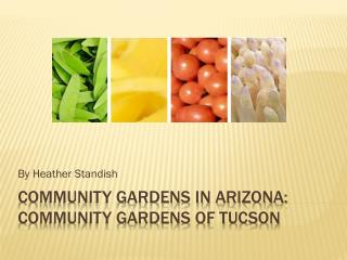Community Gardens in Arizona: Community Gardens of Tucson