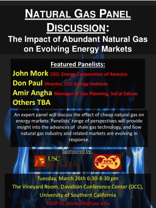 Na tural Gas Panel Discussion : The Impact of Abundant Natural Gas on Evolving Energy Markets