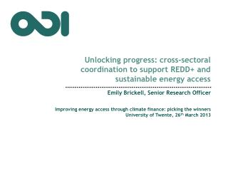 Unlocking  progress: cross-sectoral coordination to support REDD+ and sustainable energy access