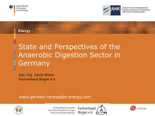 State and Perspectives of the Anaerobic Digestion Sector in Germany