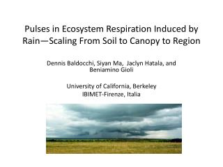 Pulses in Ecosystem Respiration Induced by Rain�Scaling From Soil to Canopy to Region