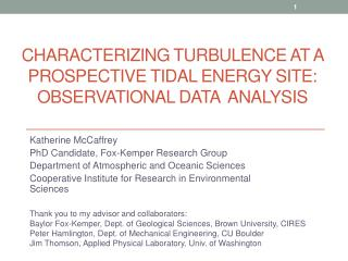 Characterizing Turbulence at a Prospective Tidal Energy Site: Observational Data  Analysis