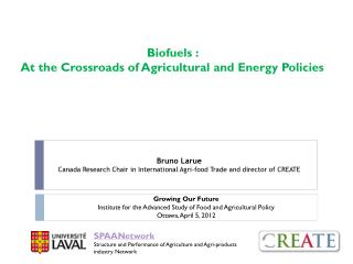 Biofuels �:  At the Crossroads of Agricultural and Energy Policies