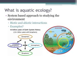 What is aquatic ecology?