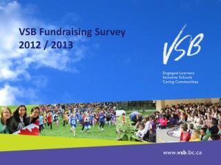 VSB Fundraising Survey 2012 / 2013