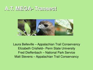 A.T. MEGA- Transect: An Introduction PPT