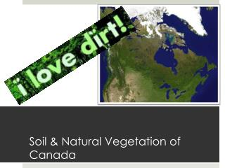 Soil & Natural Vegetation of Canada