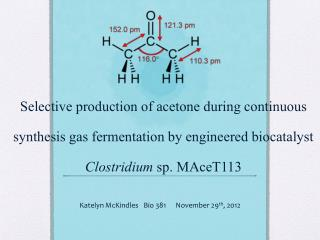 Selective production of acetone during continuous synthesis gas fermentation by engineered biocatalyst  Clostridium  sp