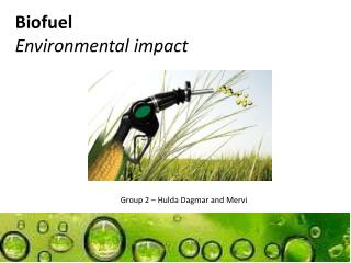 Biofuel Environmental impact