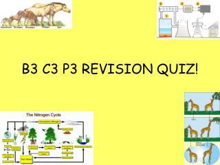 B3 C3 P3 REVISION QUIZ!