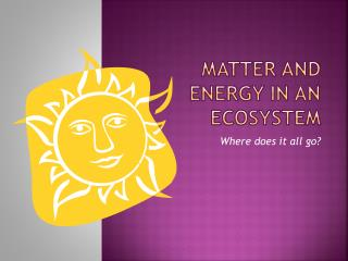 Matter and Energy in an ecosystem