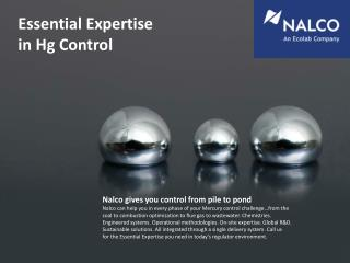 Essential  Expertise in Hg  Control