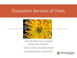 Ecosystem Services of  Trees