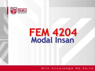 FEM 4204