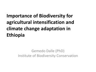 Importance of Biodiversity for agricultural intensification and climate change  adaptation  in Ethiopia