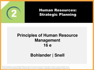 Human Resources:  Strategic Planning