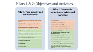 Pillars 1 & 2: Objectives and Activities