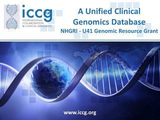 www.iccg.org