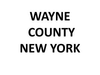 WAYNE  COUNTY NEW YORK