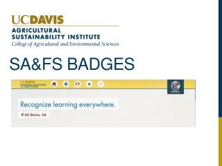 SA&FS Badges