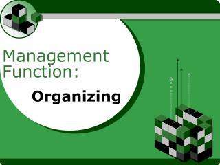 Management Function: