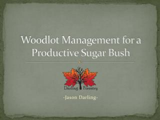 Woodlot Management for a Productive Sugar Bush