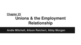 Chapter 23 Unions & the Employment Relationship