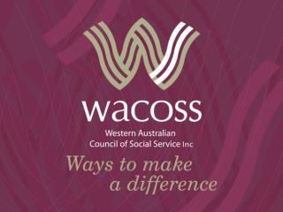 Giving Shape to the ER sector 2013 divERsity Conference Presented by Irina Cattalini, WACOSS CEO