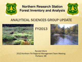 Analytical Sciences group update FY2013