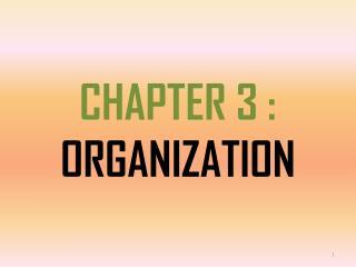 CHAPTER  3 : ORGANIZATION