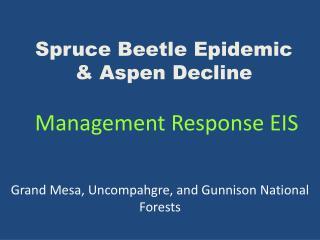 Spruce Beetle Epidemic & Aspen Decline  Management Response EIS