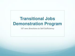 Transitional Jobs Demonstration Program