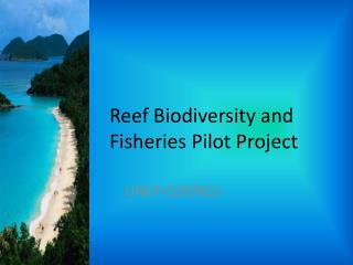 Reef Biodiversity and Fisheries Pilot Project