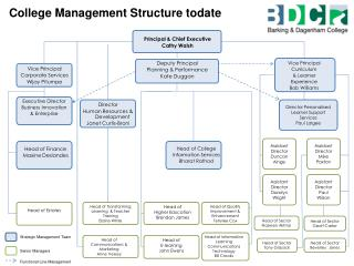 College Management Structure todate