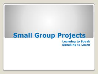 Small Group Projects