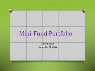 Mini-Fund Portfolio