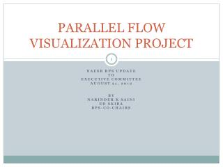 PARALLEL FLOW VISUALIZATION PROJECT